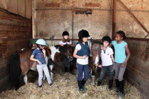 Séjour équitation,poneys, campagne pour enfants et ados